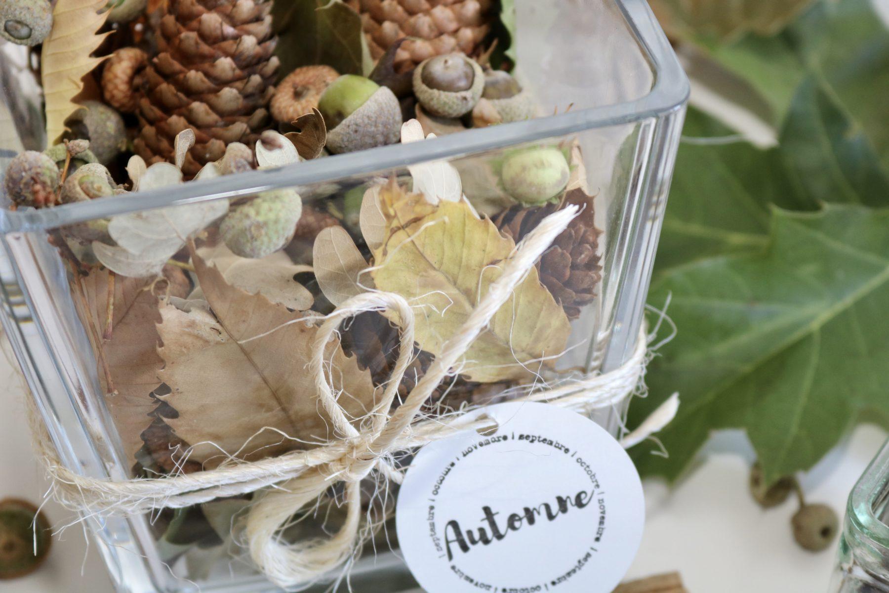 Deco D Automne Facile dÉco d'automne : centre de table végétal et petit cadre - my